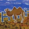 camel-mini-set-80-1369931863-jpg