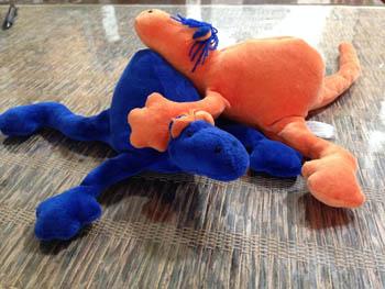 geckos-1462297785-jpg
