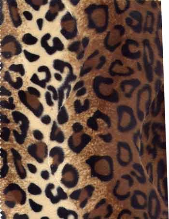 soft-fur-leopard-1335455685-jpg