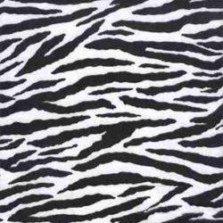 2019-10-03-zebra-plush-jpg