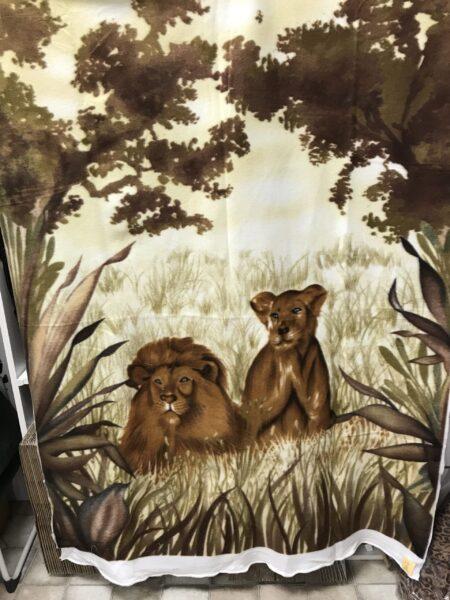2021-08-lion-scaled-e1628029796467-jpg