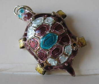 charm-turtle-913-1391371130-jpg