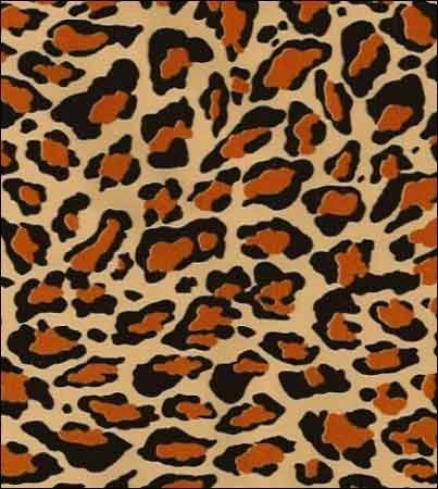 leopard-light-oilcloth-10-1334189182-jpg
