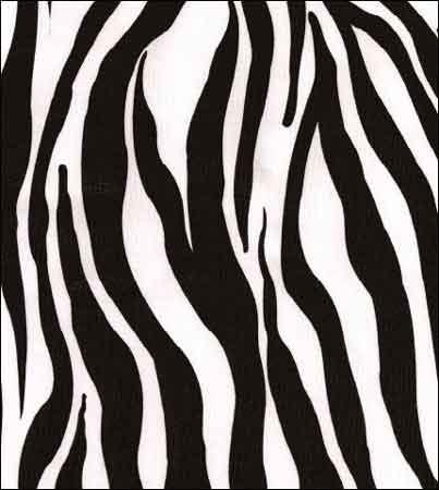 zebra-black-oilcloth-4-1334189179-jpg